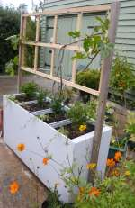 Planter, built from a filing cabinet